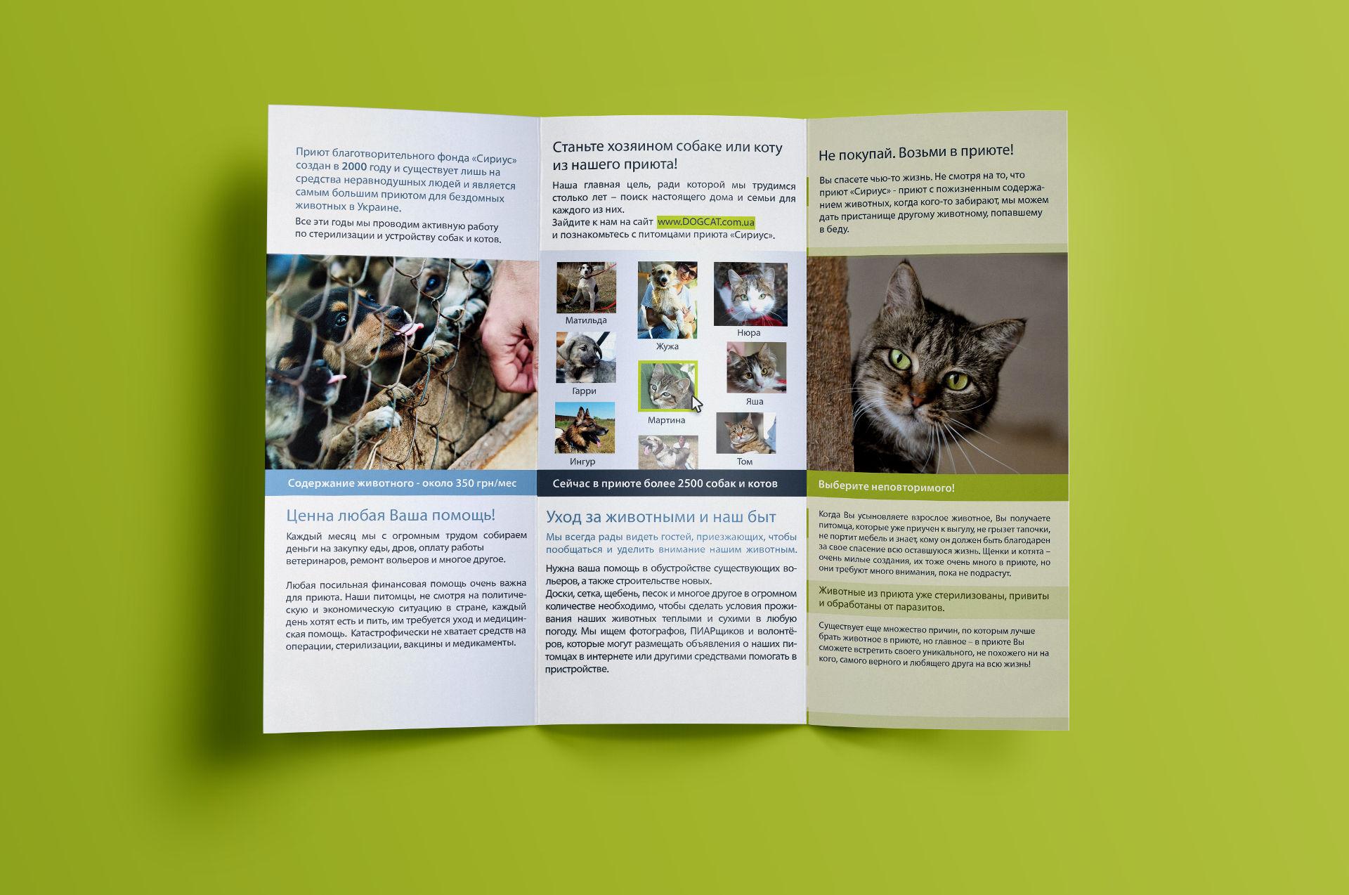 Flyer design для приюта животных, Animal shelter flyer design